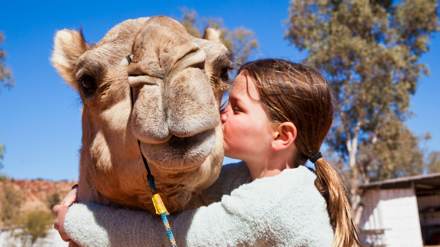 Give your camel and thank you hug!