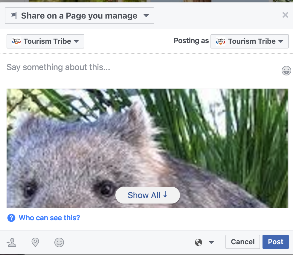 Tourism Tribe - Facebook - Share