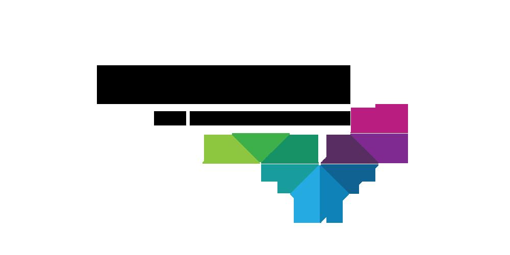 webnoise_logo